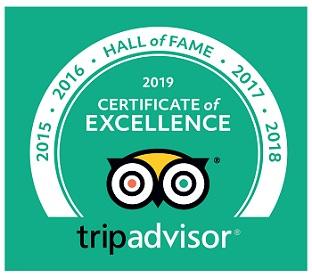 Check Our Reviews in Tripadvisor